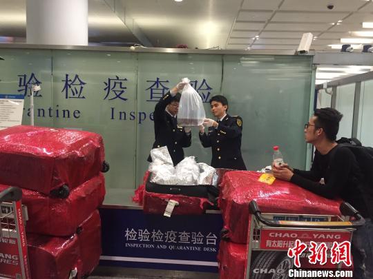Glass eel seizure in Hangzhou, China